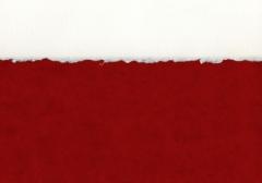 Deckled Paper Detail